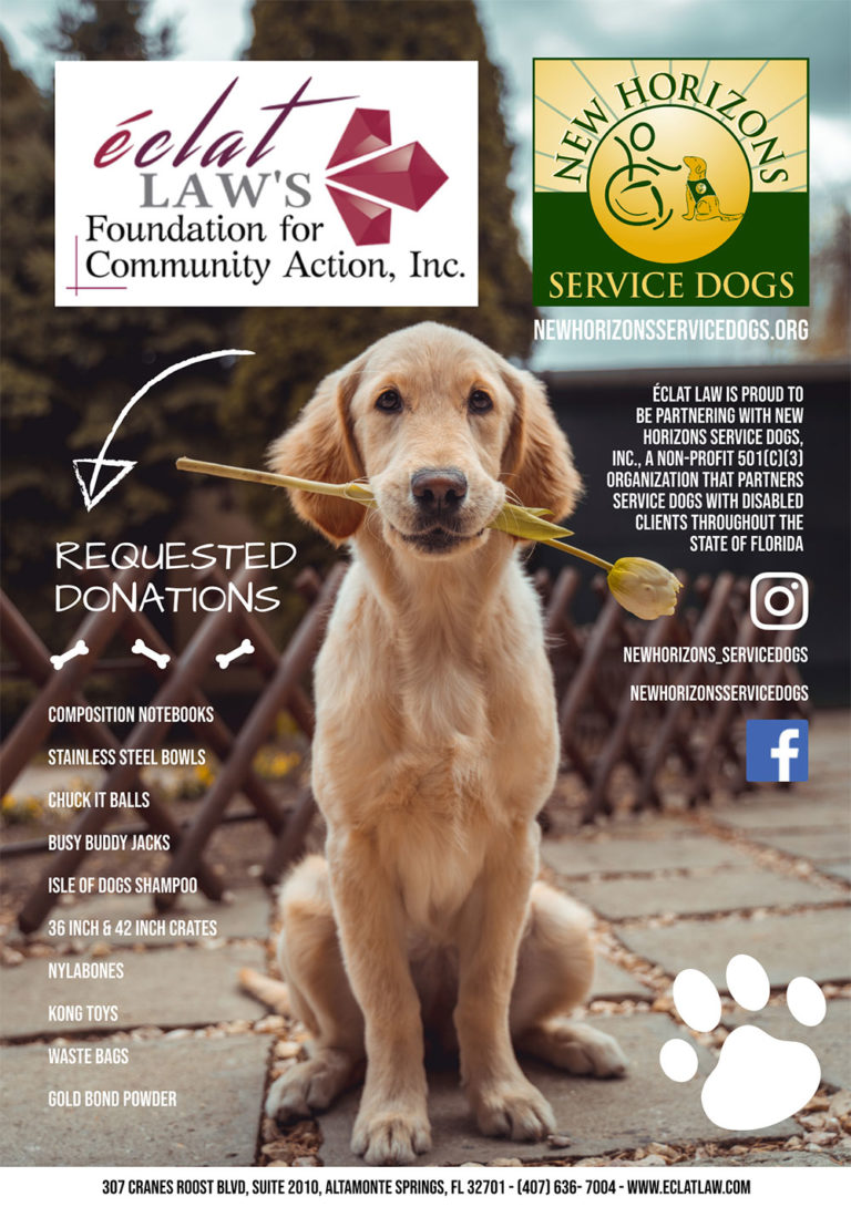 New-Horizons-Service-Dogs-Flyer---Firm-Foundation